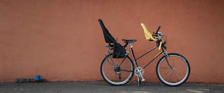 my family bike with 2 bike child seat