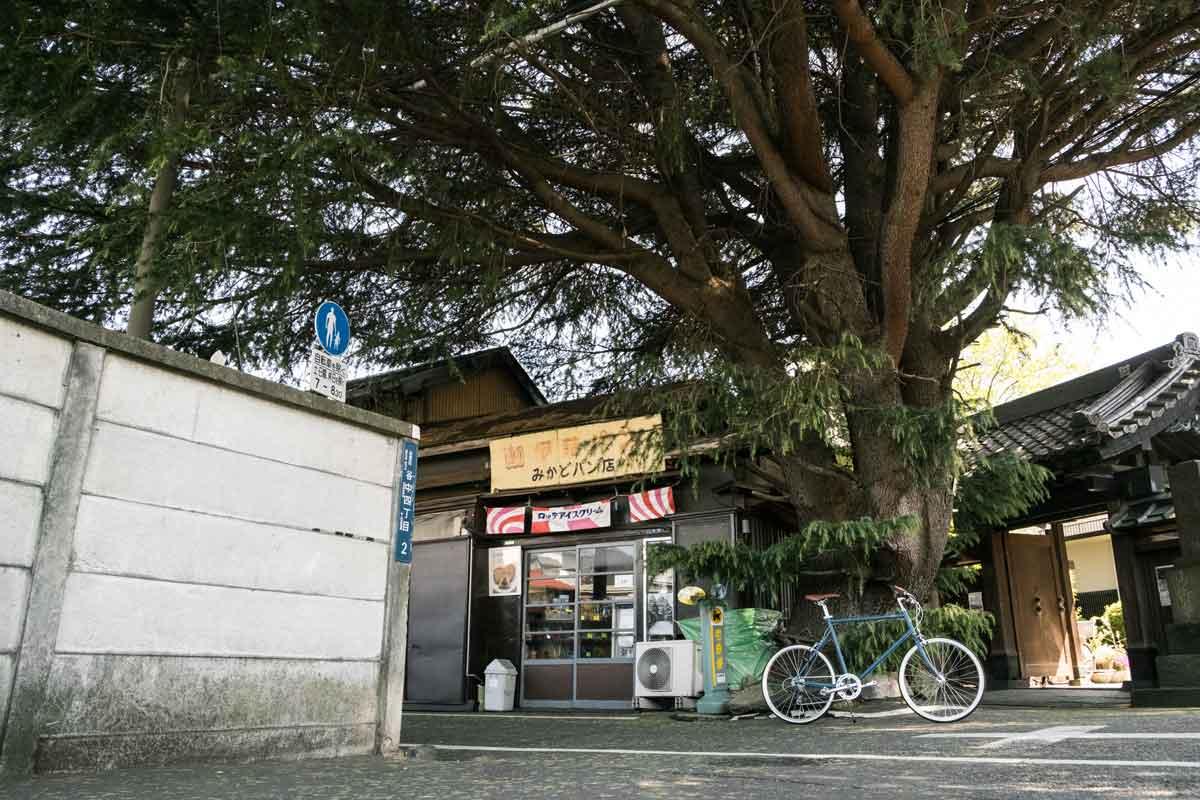 เช่าจักรยานขี่ในญี่ปุ่น เที่ยวญี่ปุ่น